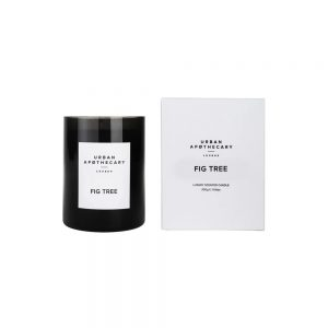Fig Tree Candle